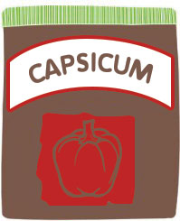 how to grow capsicum in your garden
