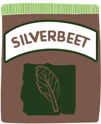 how to grow silverbeet in your garden